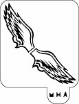 MR. HAIR ART STENCIL - PHILADELPHIA EAGLES WINGS